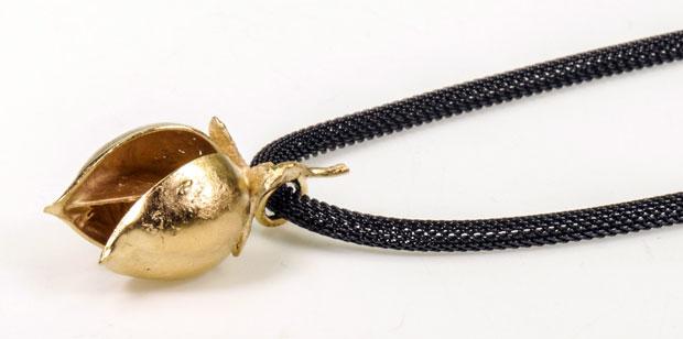 tomentosa-Gold-620